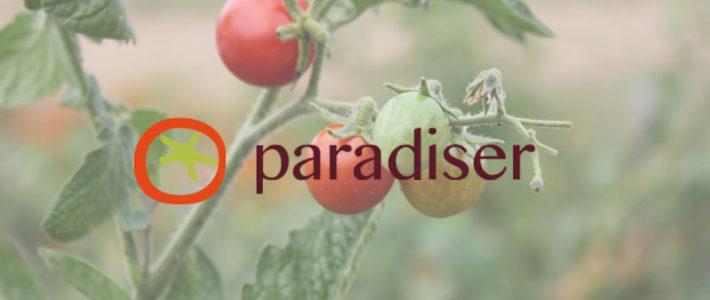 paradiser